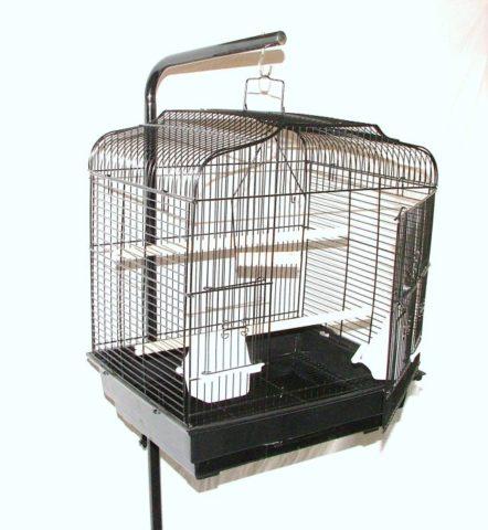 Koleksi Sangkar Burung Anda Mulai Rusak? Cermati Sangkar Untuk Refinshing Tepat